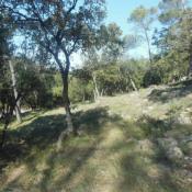 Terrain 2000 m² Vidauban (83550)