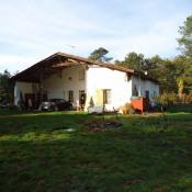 location Maison / Villa 4 pièces Luxey