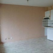 vente Appartement 1 pièce Artiguelouve