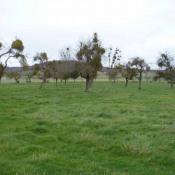 Terrain 1200 m² Hecmanville (27800)