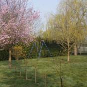 Terrain 356 m² Villemer (77250)