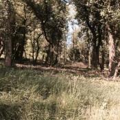 Terrain 570 m² Montélimar (26200)