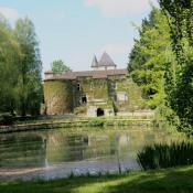 Niort, Château 10 pièces, 320 m2