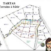 Tartas, 894 m2
