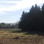 Terrain 402 m² Montfavet (84140)