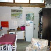 vente Maison / Villa 1 pièce Secteur Pithiviers