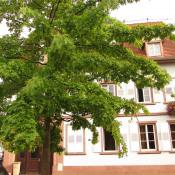 vente Appartement 3 pièces Niederbronn les Bains