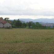 Terrain 500 m² Le Bois-d'Oingt (69620)