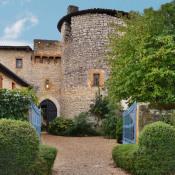 Chazay d'Azergues, Château 19 pièces, 1214 m2