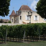 Sainte Foy la Grande, Château 20 pièces, 520 m2