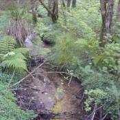 Vente terrain Plumelec 9000€ - Photo 3