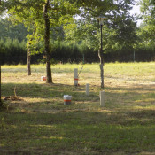 Terrain 894 m² Tartas (40400)