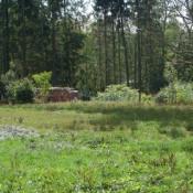 Terrain 596 m² Chaource (10210)
