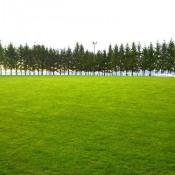 Terrain 400 m² Chanas (38150)