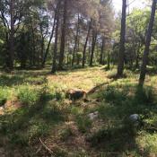 Terrain 2500 m² Roquefort-les-Pins (06330)