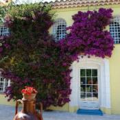 vente Maison / Villa 9 pièces La Cadiere d Azur
