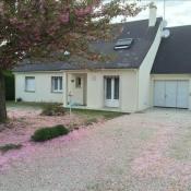 vente Maison / Villa 9 pièces Saunay