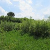 Terrain 562 m² Pontonx-sur-l'Adour (40465)