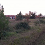 Terrain 800 m² Geloux (40090)