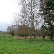 Terrain 3727 m² Montmirail (51210)