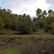 Terrain 3600 m² Trans-en-Provence (83720)