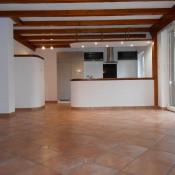 vente Maison / Villa 3 pièces Rhinau