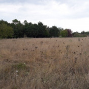 Terrain Camps-sur-l'Isle 846 m²