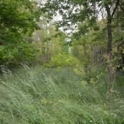 Vente terrain Gurgy