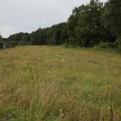 Terrain 3000 m² Chantilly (60500)