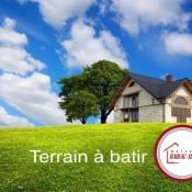 Terrain 1375 m² Nevoy (45500)