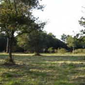 Terrain 1700 m² Montazeau (24230)