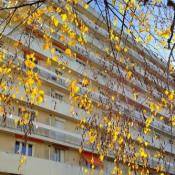 Vichy, Apartamento 4 assoalhadas, 84 m2