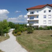 location Appartement 2 pièces Ferney-Voltaire