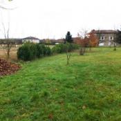 Terrain 351 m² Saint-Jean-d'Ardieres (69220)