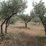 Vente terrain Aups 126000€ - Photo 3