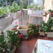 Antibes, Apartamento 3 assoalhadas, 70 m2