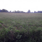 Terrain 1500 m² Montpon-Ménestérol (24700)