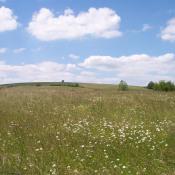 vente Terrain Saint-Hilaire-de-Brethmas