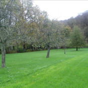 Vente terrain Daubeuf serville 54600€ - Photo 5
