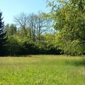 Terrain 500 m² Haguenau (67500)