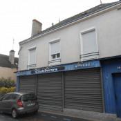Vente immeuble La Guerche De Bretagne