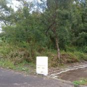 vente Terrain La Plaine des Palmistes