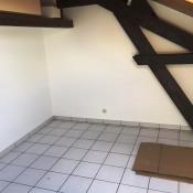 location Appartement 1 pièce Fontaines-sur-Saône