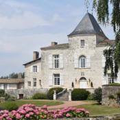 Niort, Castelo 11 assoalhadas, 500 m2
