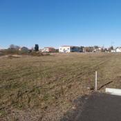 Terrain 603 m² Rion-des-Landes (40370)