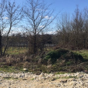 Terrain 1320 m² Saint-Caprais-de-Blaye (33820)