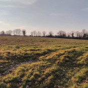 Terrain 609 m² Mouilleron-le-Captif (85000)