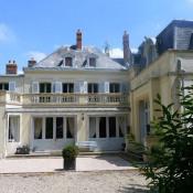 vente Maison / Villa 18 pièces Nangis
