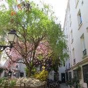location Appartement 1 pièce Paris 9ème