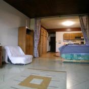 vente Appartement 1 pièce Peira Cava